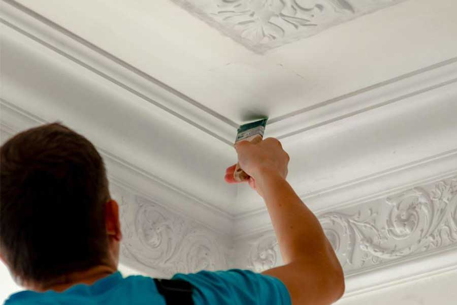Protect from Mold and Mildew with beautiful Paint