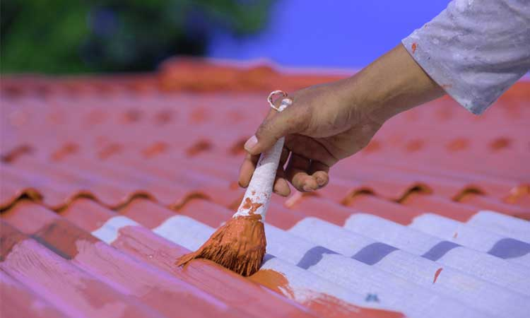 Corrugated Metal Roof Painting